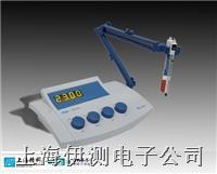 上海精科實驗室鈉離子濃度計 DWS-51
