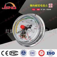 轴向耐震点接点压力表 YNXC-100ZT/150ZT