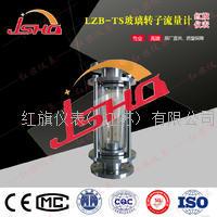 HQLZB-TS玻璃转子流量计 HQ-LZB-TS