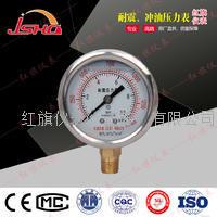 充油抗震压力表 YN-60/YN-100/YN-150
