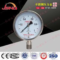 耐硫压力表 YTU-100S、150S