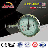 耐震電接點雙金屬溫度計