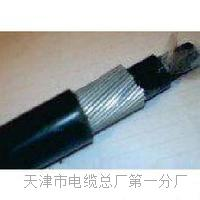 自承式电话电缆_HYAC _100×2×0.5