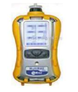 PGM-6248复合气体及射线检测仪 PGM-6248