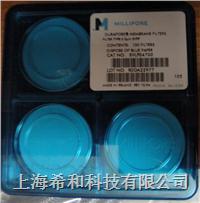 DVPP01300 聚偏二氟乙烯,0.65um,孔径,13mm直径 DVPP01300
