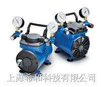 真空壓力兩用泵,Chemical Duty 泵,220 V/50 Hz WP6122050