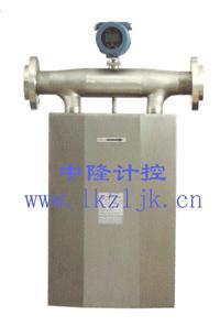 气体质量流量计厂家 DMF-2