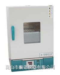 小型鼓风干燥箱 101/202/303