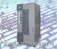光照培养箱  BSG-300(**)