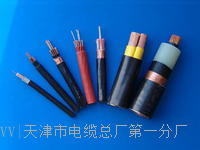 MHYAV50*2*0.8电缆国标型号 MHYAV50*2*0.8电缆国标型号