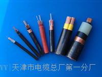 MHYAV50*2*0.7电缆结构图 MHYAV50*2*0.7电缆结构图