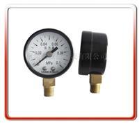 40MM径向气压表 40QL-L02