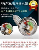 60MM常规型SF6气体密度继电器SF6电接点密度压力表