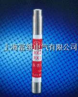 RX2-1000报警熔斷器 RX2-1000