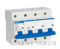 NXB-125G小型斷路器 NXB-125G/3P