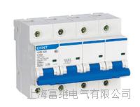 NXB-125小型斷路器 NXB-125/3P