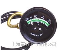 TSW102水温表 TSW102