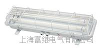 TCY20-2荧光舱顶灯 TCY20-2E
