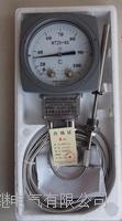 WTZK-02温度控制器 WTZK-02