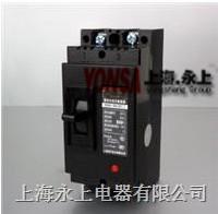 DZ15-100/4902塑壳断路器