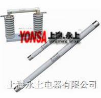 XRNP2-40.5/0.5高压限流熔断器