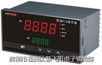 XMT628 智能调节器 XMT628