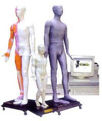 针灸器材|光电感应针灸模型|多媒体人体针灸穴位发光模型