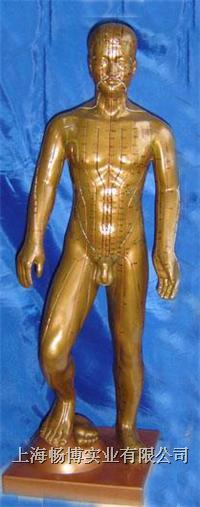 针灸教学模型|运动式古铜色人体针灸模型