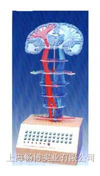 电动医学教学模型|**神经传导电动模型 SME01