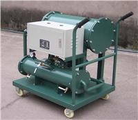 轻质油聚结水分滤油机 ZJD-F-10