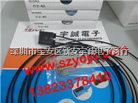 光纤传感器 CZ-40