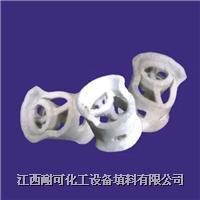 Ceramic Conjugate Ring