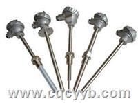 WZ装配热电阻 WZP,WZC,WZP2