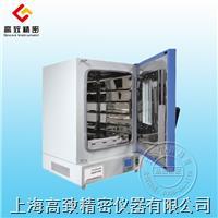 BPG9000系列立式鼓风干燥箱 BPG9000系列立式鼓风干燥箱