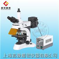 N-800F 實驗室熒光顯微鏡 N-800F