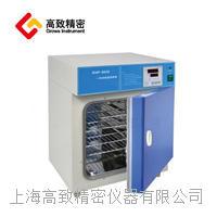 電熱恒溫培養箱DHP系列