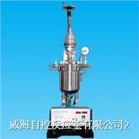 實驗室加氫反應釜 WDF