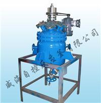氫化釜 WHF