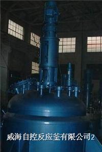 鈦材反應釜 鈦反應釜 WHF-XT