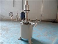 高溫高壓反應釜 WHF