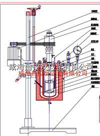 5L實驗反應釜 WHFS-5L