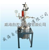 5L試驗室反應釜 WHFS-5L
