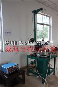 高温高压反应釜 WHFS -10