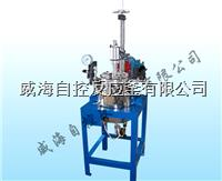 實驗室用反應釜5L WHFS-5L