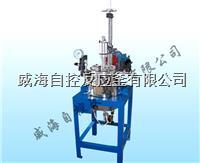 5L试验用反应釜 WHFS-5L