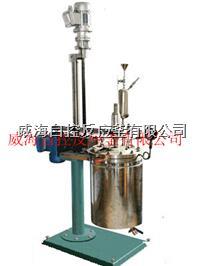 5L高壓反應釜 WHFS-5L