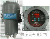 8866氢气分析仪 8866