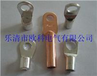 铜鼻子,镀锡铜鼻子 SC35-8,OT16-6,DT25