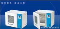电热恒温培养箱系列 DH2500AB