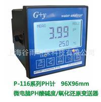 中英文PH計,中文在线PH計,工业PH計P-116型